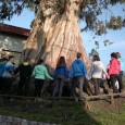Los alumnos de 1º y 2º de la ESO visitan el CEAm (centro de educación ambiental) de Viérnoles, y disfrutan de una estancia de 4 días aprendiendo y conviviendo en la naturaleza.